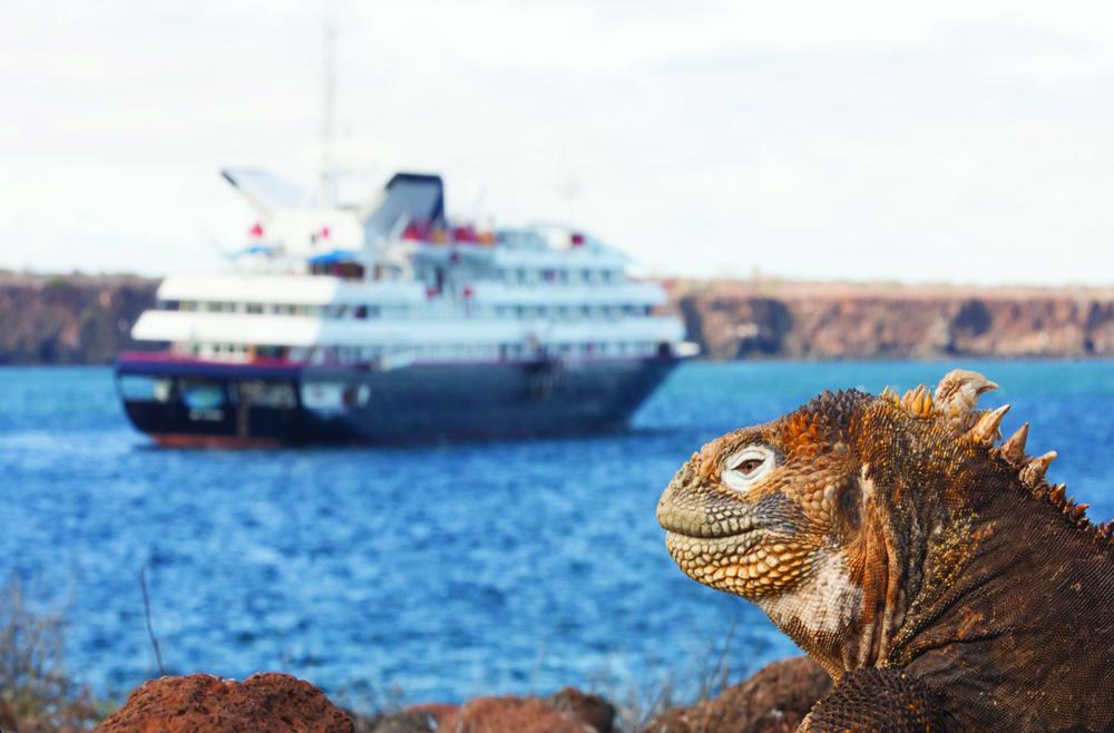 Cruise Ecuador From 9029 Ship Silver Galpagos  Silversea  Logitravelcouk